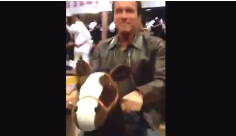 Video: Just Arnold Schwarzenegger Riding a Tiny Toy Horse